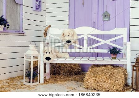 Veranda country house white bench and straw. Yard in lavander color near the house. Beautiful Flowers on vintage background in spring season. Imitation of Exterior indoors. Artificial exterior scene.