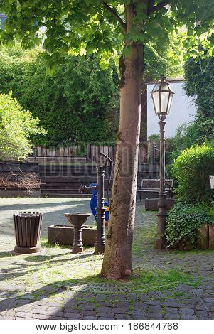 old waterpump tree and trough in courtyard