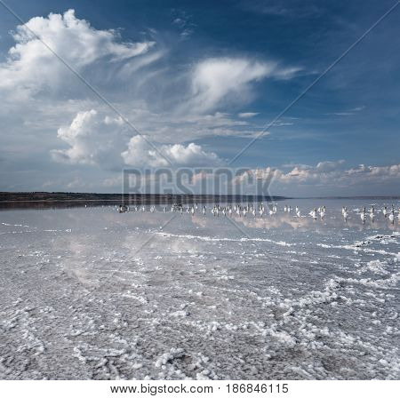White crystals on the dead saline. Blue sky with white clouds. Landscape of a saline poster