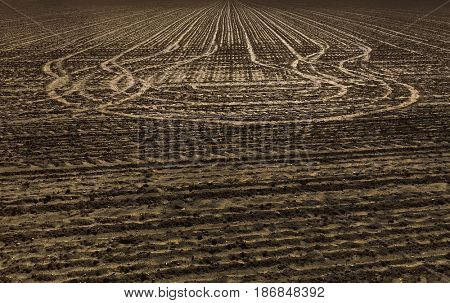 traces of tractor on a field in agriculture