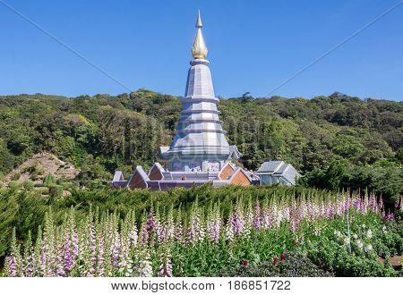 Doi Inthanon national park of Thailand .