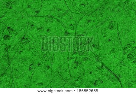 Abstract texture of pressed paper macro of green color