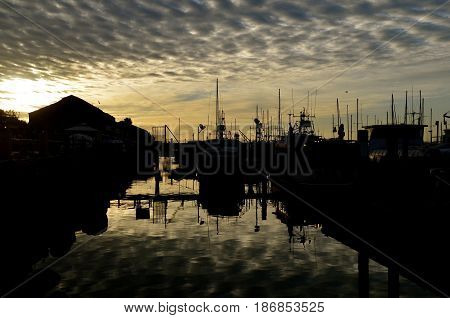 Reflection of the clouds on the water at a pier in San Diego with the masts of boats standing upright.