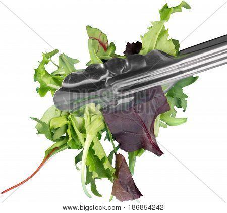Salad leaves food leafy vegetables isolated ingredients leaf