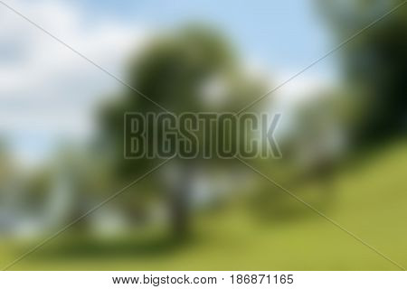 blurred background farmland with green field and garden trees