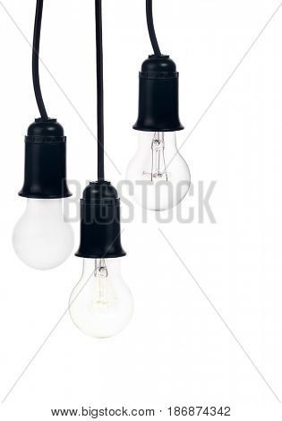 tree hanging electric lamps in receptacle isolated on white background