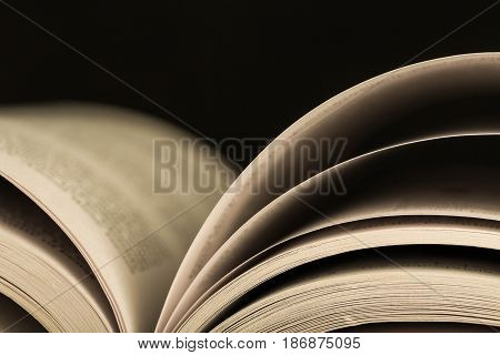 Book open book learning education literature close up novel
