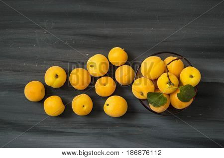 Wonderful apricot pictures for apricot jam and apricot compost