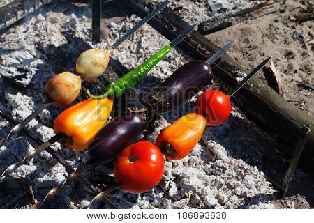 Vegetable Shish Kebab With Tomato, Paprika, Onion, Eggplant And Hot Pepper Cooking In Forest On Bonf
