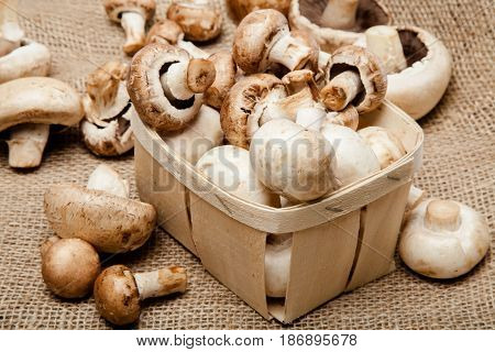 Vegetables mushrooms champignon button mushroom fungi basket white button mushroom