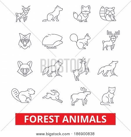 Forest animals, elk, wolf, fox, rabbit, squirrel, hedgehog, hunting deer, bear line icons. Editable strokes. Flat design vector illustration symbol concept. Linear signs isolated on white background