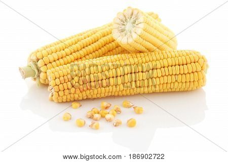 Corn cobs close-up on a white background. Isolate