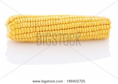 Cob of corn close-up on a white background. Isolate