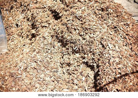 The close-up of a peat bunch with shredded wood splinters.