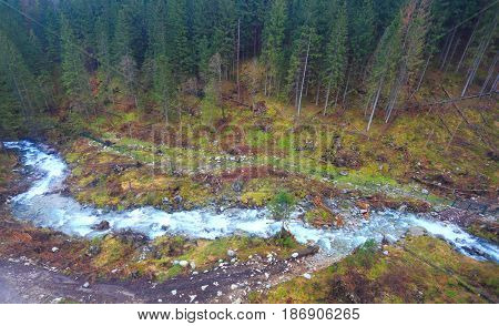 Mountain сreek In Forest From Above