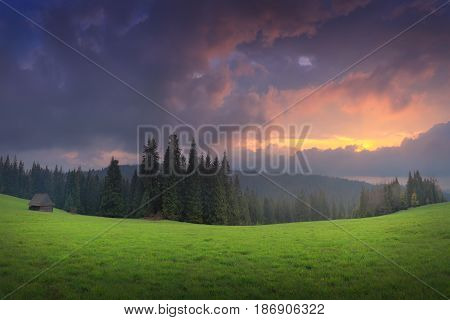 Green Alpine Valley In The Evening