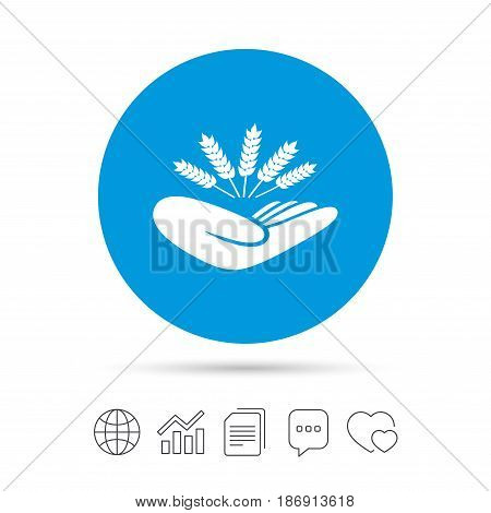 Agriculture insurance sign icon. Hand holds wheat. Protection against crop failure and drought. Copy files, chat speech bubble and chart web icons. Vector