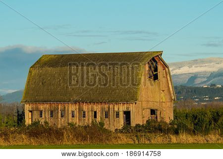 Abandoned, weathered barn in Skagit Valley, WA