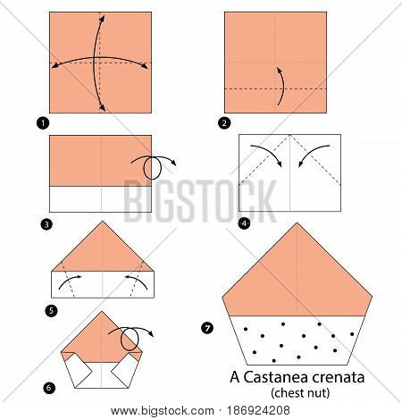 step by step instructions how to make origami a Chestnut.