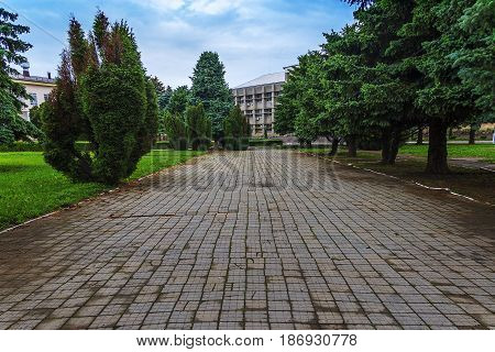 Of which sidewalk made of a tile of gray color on the parties is stood by green trees conducts to the gray gloomy building which is looked through between trees.