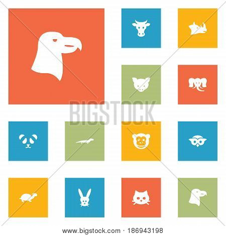 Set Of 12 Alive Icons Set.Collection Of Hog, Kine, Rhinoceros And Other Elements.