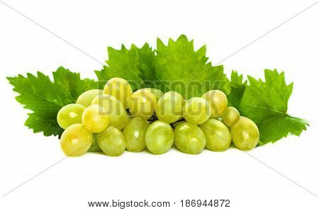 Green Grape and Grapevine with Green Leaves Isolated on White Background