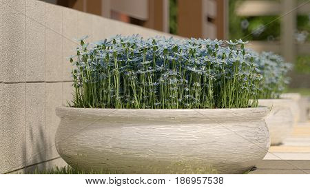 3d illustration of the big outdoor vase with blue flowers