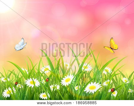 Sunny pink background. Butterflies flying above the grass and flowers, illustration.