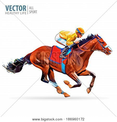 Jockey on horse. Champion. Horse racing. Hippodrome. Racetrack Jump racetrack Vector Illustration