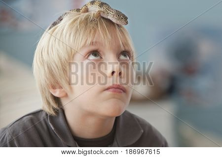 Caucasian boy with lizard on his head