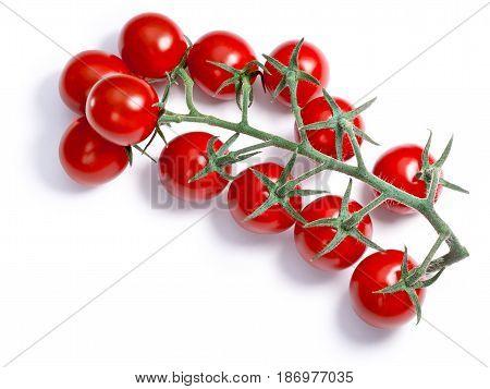 Cherry Tomatoes On Vine, Paths