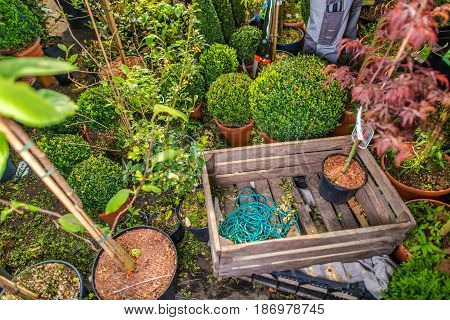 Landscaping Business Storage with Many Garden Decorative Plants Wooden Crate and Tools