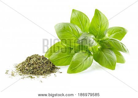 Fresh and dry basil leaves