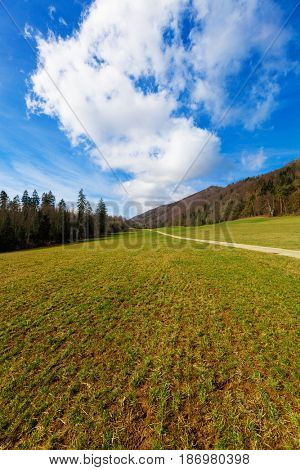 Countryside landscape in spring, agriculture