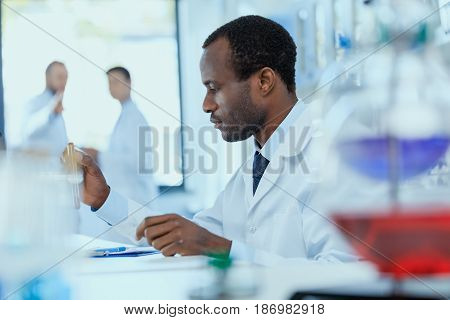 Side View Of African American Scientist In White Coat Holding And Examining Test Tube With Reagent,