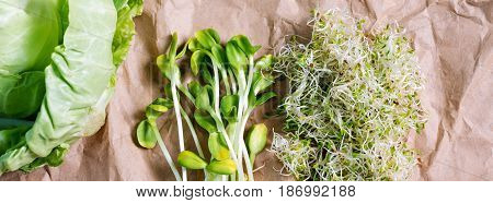 Mixed organic micro greens and cabbage on craft paper. Fresh sunflower and heap of alfalfa micro green sprouts for healthy vegan food cooking. Healthy food and diet concept. Cut microgreens, top view, banner for website.