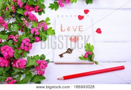 Open paper notebook with the inscription love next branch of a hawthorn with pink flowers