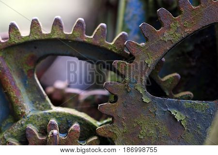 Old broken mechanism at the dump - gears