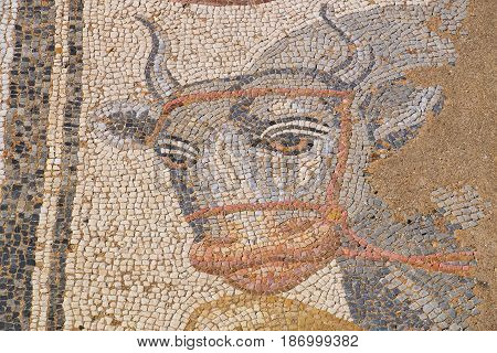Fragment of antique mosaic at the Archaeological Park of Dion. Pieria Macedonia Greece