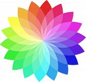 Vector color wheel. poster