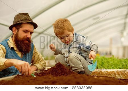 Botanic Worker. Botanic Worker Child With Father In Greenhouse. Farm Worker In Botanic Garden. Botan