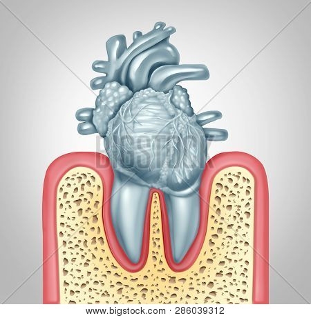 Dental Care Or Oral Health And Heart Disease Hygiene Concept Caused By Tooth Plaque And Gum Infectio