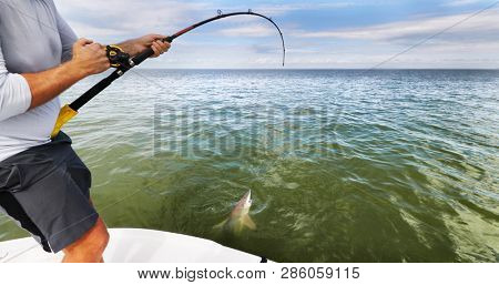 Sports fishing fisherman man pulling off spinner shark . Big game blue water fish catch and release . Boat tour tourism activity on the sea.