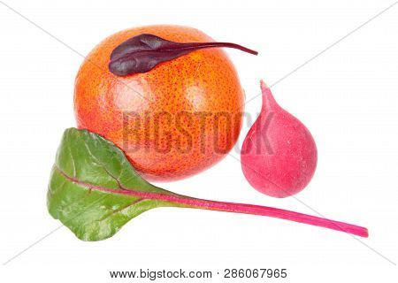 Minimalistic still life with unexpected combination of blood orange, pink radish and fresh chard green leaf isolated on white background. Ingredients for salad poster