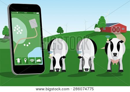 Control Of A Herd Of Cows On A Dairy Farm By Mobile Application. Smart Farming