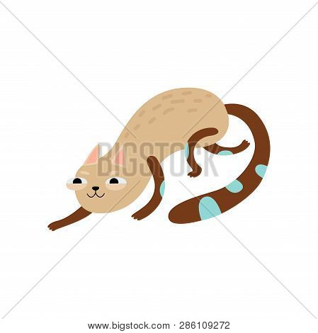 Funny Cat Sneaking, Cute Animal Pet Character Vector Illustration