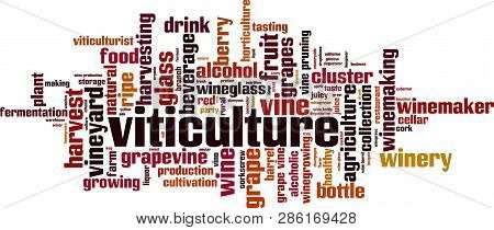 Viticulture Word Cloud Concept. Vector Illustration On White
