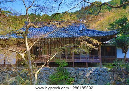 The Zen Garden At Daigoji Temple Spring
