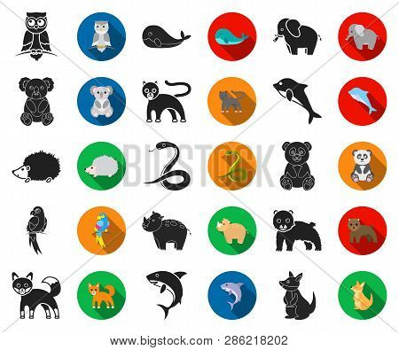 An Unrealistic Animal Black, Flat Icons In Set Collection For Design. Toy Animals Vector Symbol Stoc