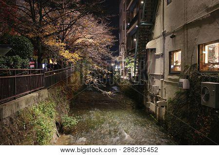 Gion Shirakawa At Night View At Fall